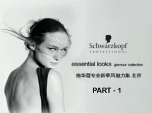 Schwarzkopf Essential Looks Hair Show Beijing - 1