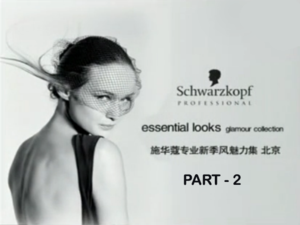 Schwarzkopf Essential Looks Hair Show Beijing - 2