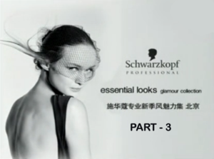 Schwarzkopf Essential Looks Hair Show Beijing - 3